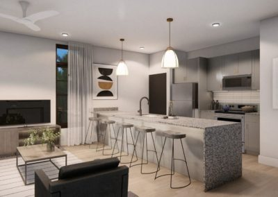 T1 UA Kitchen and Living
